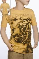 Burning Tiger Image